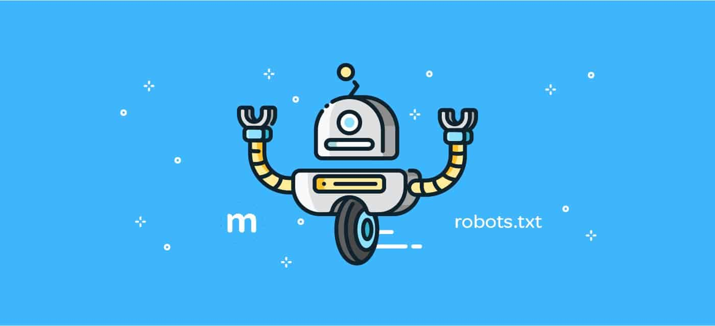 What is the robots.txt file? (2018)