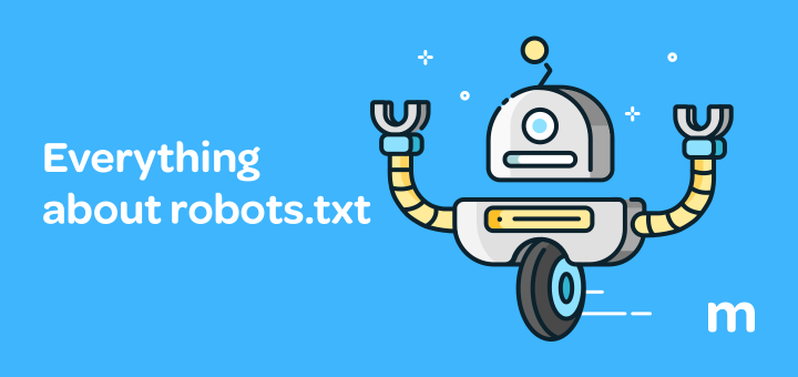 what-is-robots-txt