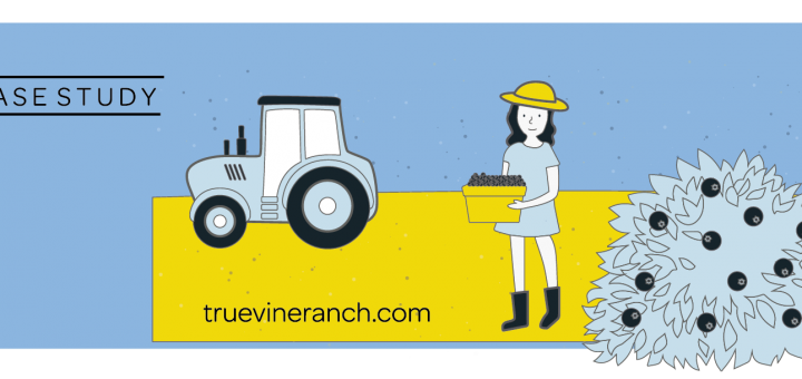 seo for true vine ranch