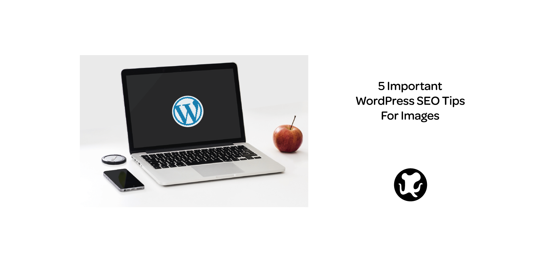 5 Important WordPress SEO Tips For Images