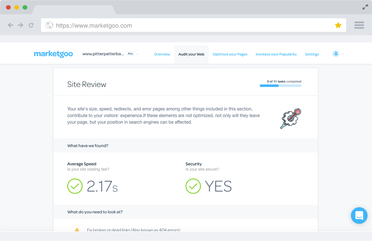 PRO-Audit-Your-Site-Review.1