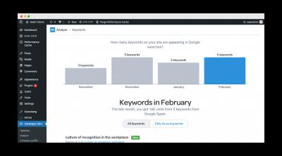 marketgoo-wordpress-keywords-3